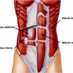 Lumbalgia y estabilización lumbar: entrenamiento abdominal