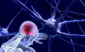 neurociencia-dolor-cronico-dolor-de-espalda