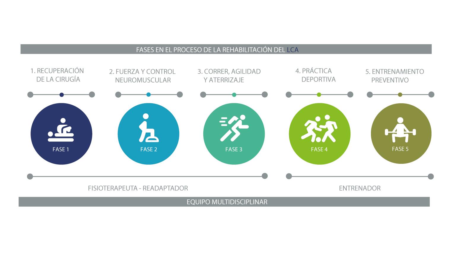 fases-rehabilitacion-ligamento-cruzado-anterior-lca
